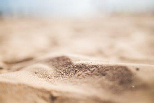 Voyage : comment se débarrasser des puces de sable ?