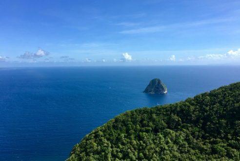 L'île aux fleurs : à la découverte de la Martinique !